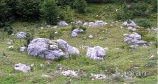 Slika1b